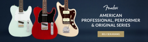 tips beli alat musik online
